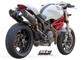 Oval Exhaust by SC-Project Ducati / Monster 1100 / 2010
